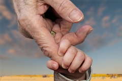 Close-up of baby holding an old woman's finger