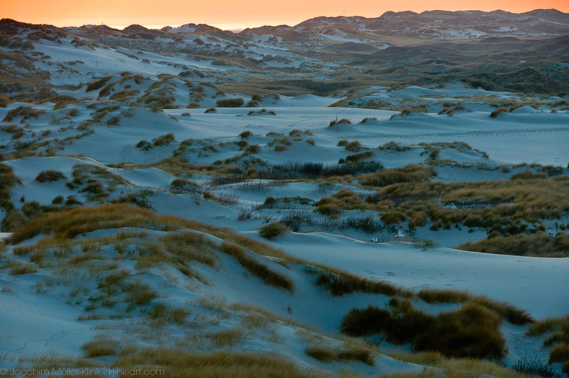 Dünen zur blauen Stunde - Dunes at the blue hour