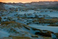 Dünen zur blauen Stunde - Dunes at the blue hour