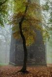 Rapunzels Turm - Rapunzel's tower