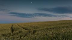 Weizenfeld und Halbmond
